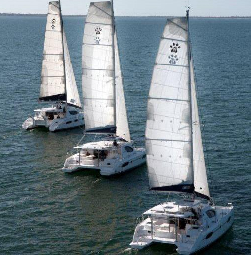 Three Leopard Catamarans sail together